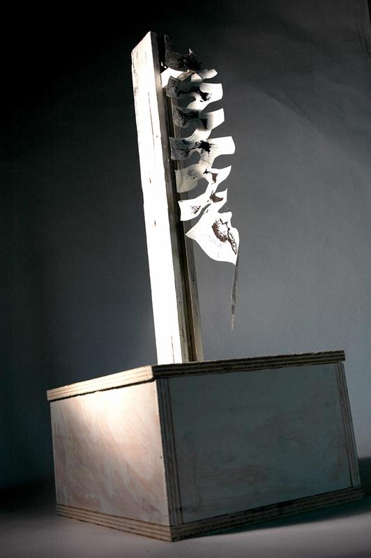 02 Senza titolo, legno e carta, 2003 2005