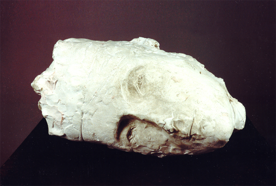 12 Miriam (Una regina), Gesso e lastra in ferro, 2002.